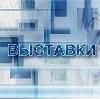 Выставки в Большеустьикинском